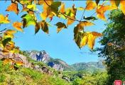 网友拍摄元宝山国家森林公园归来,美景尽收眼底