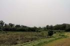 8亩水田出租,连成片,水源丰富,距县城3公里