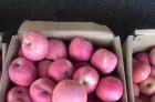 陕西黄土高原新鲜苹果