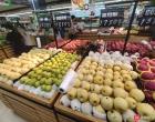 今年融水的〖水果为嘛更贵啊?两个贡梨要18.9元?惊了