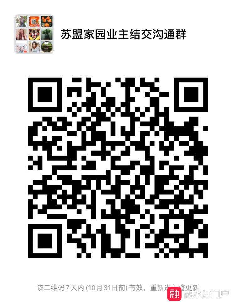 201910241690751571851030679043.jpg